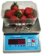 Waterproof Table Portion Scales for Sale: HCW6000 Portion Scale. Capacity 6kg x 1.0g.
